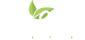Gather2Grow Arts and Crafts Store in Port Orange, Florida